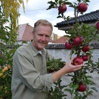zber úrody v záhrade